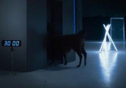 Gizem Yaratma Konusunda Kimsenin Eline Su Dökemeyeceği Samsung'tan İki Galaxy S7 Kutu Açma Reklamı