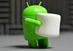 İnanmıyoruuum: Marshmallow'un Kullanım Oranı Sonunda %1'i Geçti